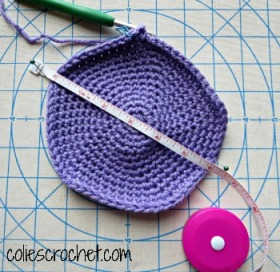 Crown Measurement Cross-stitch Rose Beanie - Colie's Crochet - coliescrochet.com