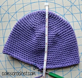 Crown-to-Bottom Measurement Cross-stitch Rose Beanie - Colie's Crochet - coliescrochet.com