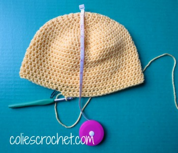 Spring-Peeper-Beanie-Length-Measurement-Colie's-Crochetdotcom-Blog